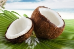 Coconut Virgin